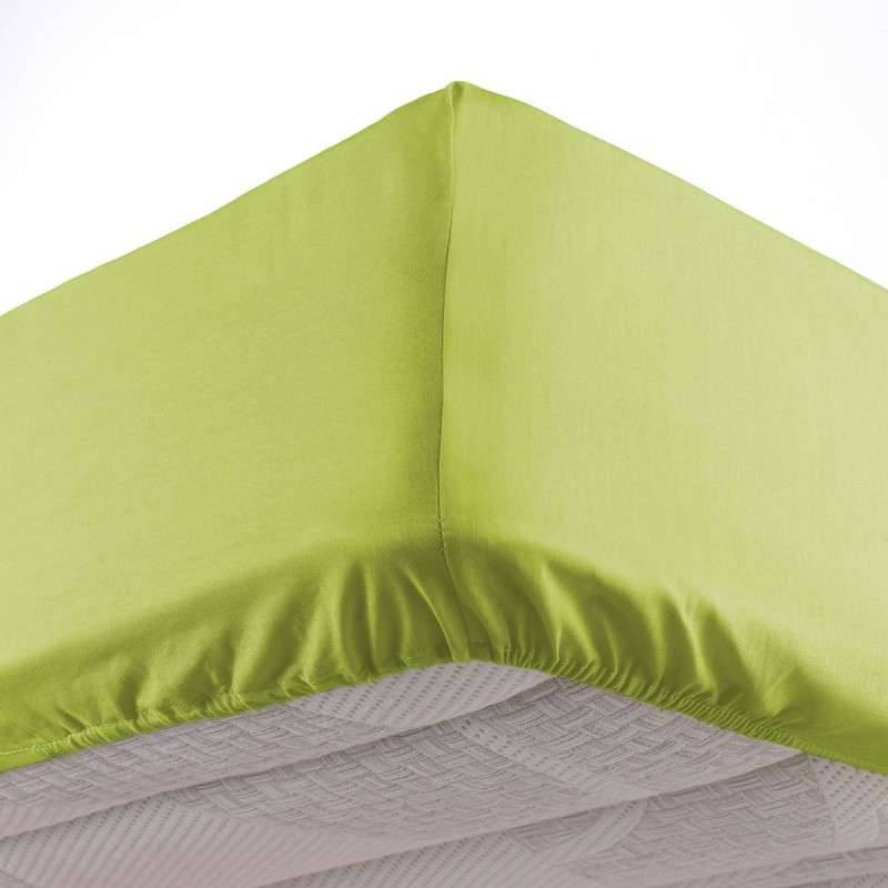 Draps Housse Mytex 80/90x 190 Cm 1 Place DH90PCDY13 - Anis